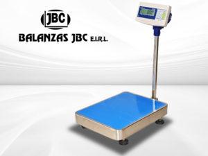 Balanza Plataforma Accura Modelo Lsb530